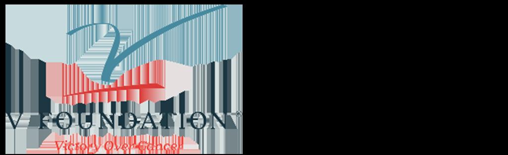 VFoundation logo for web